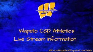 Wapello Arrows to play at Danville in first round of regional basketball.