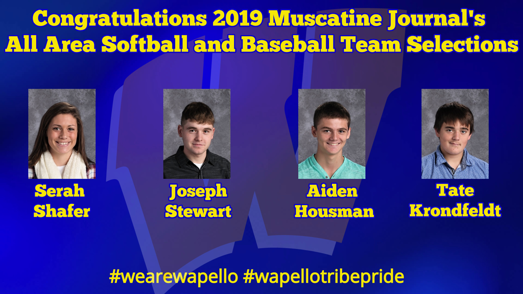 2019 Muscatine Journal All Area Team